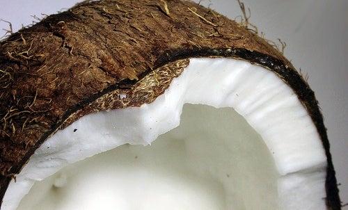 Coco é uma das melhores frutas para queimar gordura