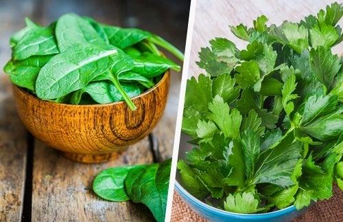 Os vegetais verdes ajudam a curar seu fígado