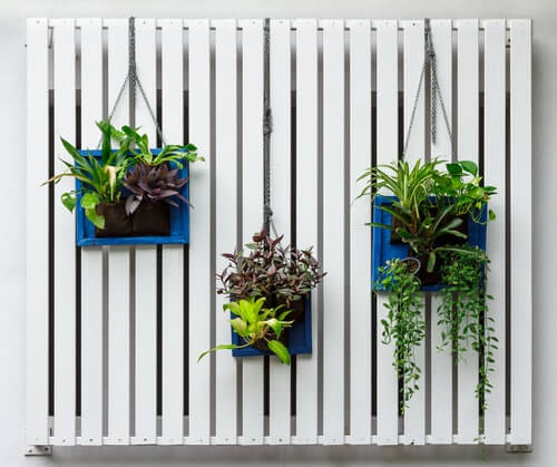 jardim_vertical
