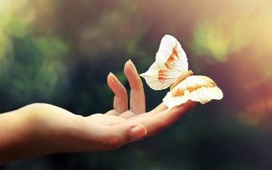 pessoa emocionalmente inteligente com borboleta
