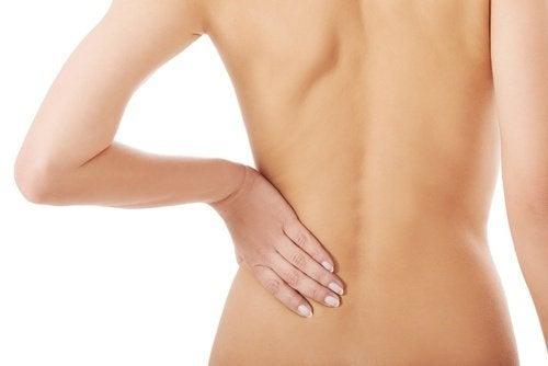 Como prevenir a dor nas costas