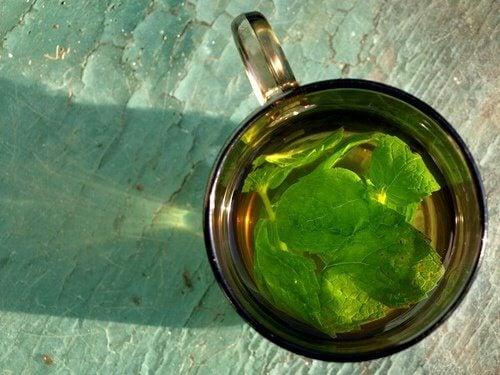 Chá de hortelã para eliminar as pedras da vesícula
