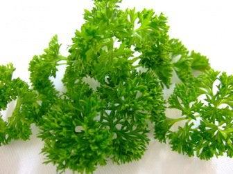 salsinha-e-ácido-úrico