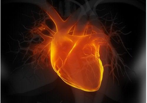 Importante! 6 sinais precoces de insuficiência cardíaca