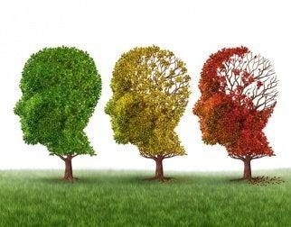 Àrvores com forma de cabeça