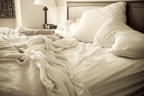 Como eliminar os percevejos da cama com remédios caseiros