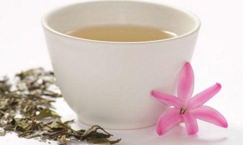 Um copo de chá branco por dia cura seu fígado