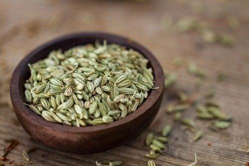 Erva doce é um dos remédios caseiros para tratar os gases estomacais