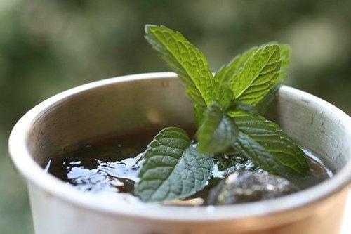 Hortelã é um dos remédios caseiros para tratar os gases estomacais