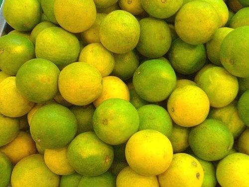 limão para digestão de alimentos gordurosos