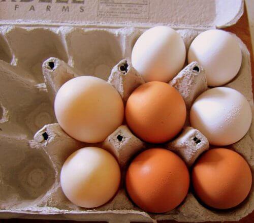 Ovos-na-embalagem