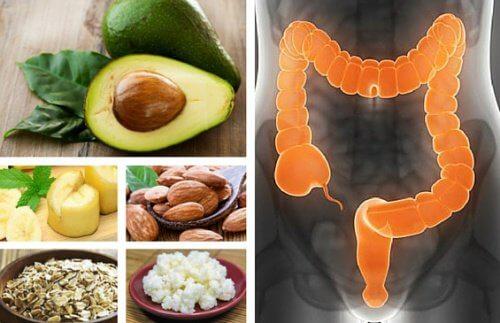 6 alimentos para tratar a síndrome do intestino irritável