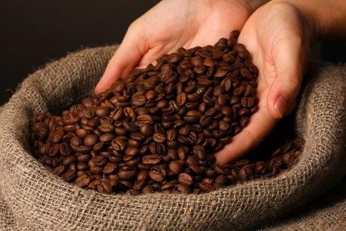 Contorno dos olhos e creme de café