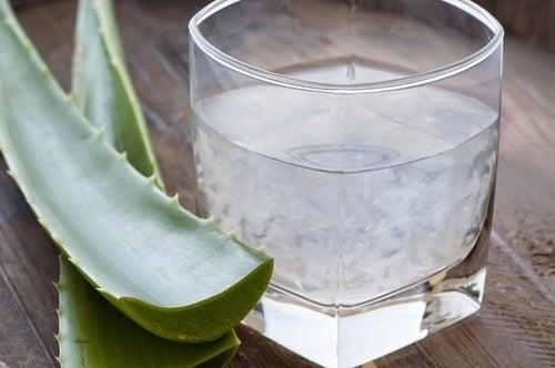 Aloe-vera-contra-acidez-estomacal