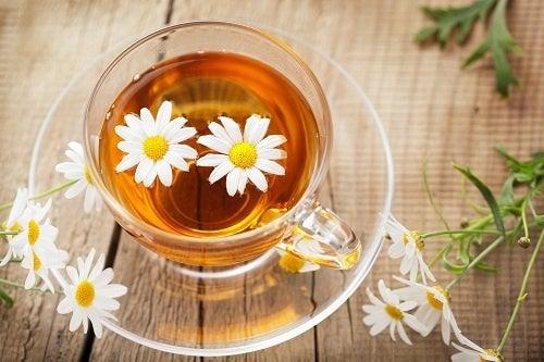 Beneficios-da-camomila-contra-acidez-estomacal