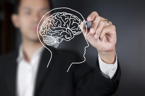 Quais são as partes do cérebro e suas principais funções? Hanna O cérebro é o encarregado de controlar e regular as funções do corpo. Este órgão é formado por milhares de células nervosas que respondem a diferentes estímulos que são enviados desde o organismo até o exterior. Atualmente continuam pesquisando para conhecer mais mas hoje revelaremos coisas interessantes. Não perca! https://melhorcomsaude.com/quais-sao-as-partes-do-cerebro-e-suas-principais-funcoes