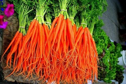 Cenoura para o colesterol