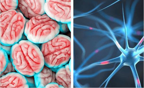 Como seu cérebro reage quando você para de comer açúcar