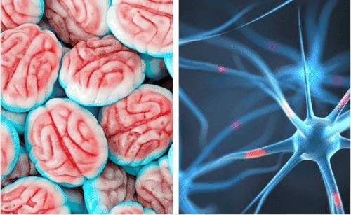 Como o cérebro reage quando paramos de comer açúcar