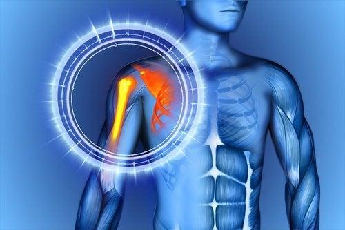 Como reduzir a dor nos ossos naturalmente