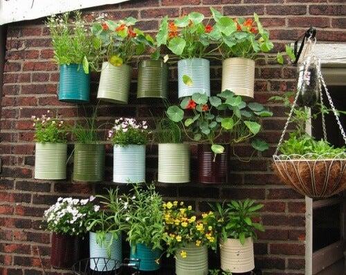 Faça da sua varanda a sua pequena horta particular