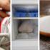 7 truques para dizer adeus aos maus odores do sapato