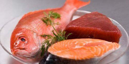 7 tipos de peixes que podem ser prejudiciais para a saúde
