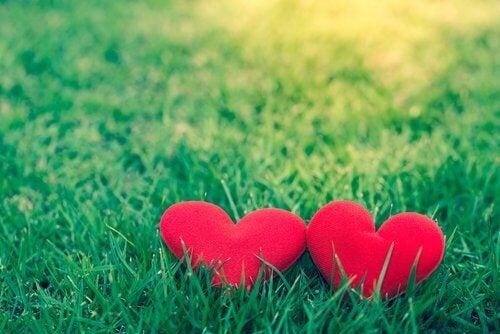 O relacionamento ideal é aquele que funciona para você