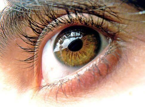 cb6cd8dc5 Como proteger os olhos dos danos causados por dispositivos eletrônicos