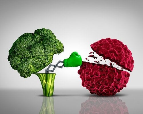 Brócolis é anticancerígeno