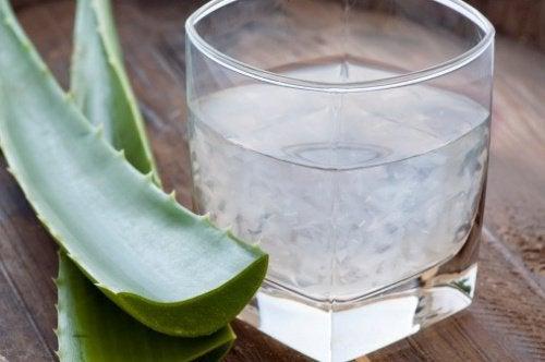 Aloe vera para a saúde vascular