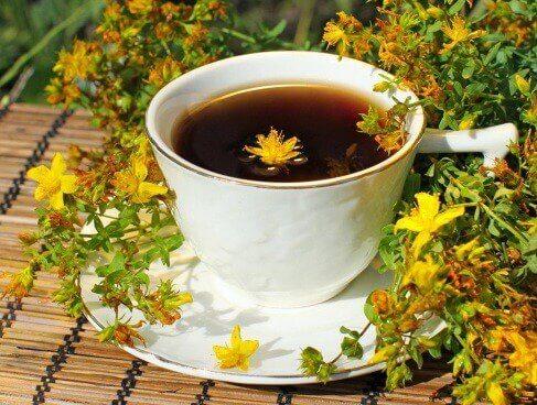 Chá de erva-de-são-joão para regular a tireoide