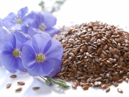 As sementes de linhaça são consideradas remédios caseiros para a prisão de ventre