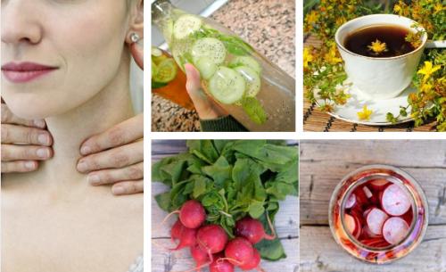 Plantas medicinais para regular e cuidar da tireoide