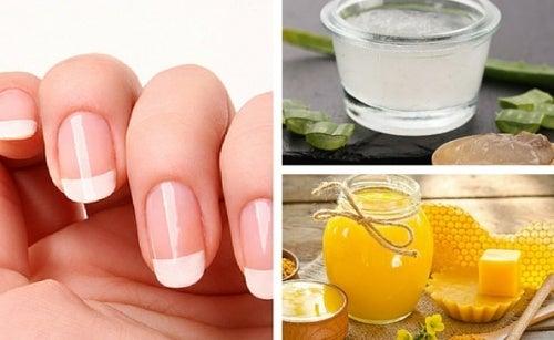 5 cremes naturais para cuidar das unhas