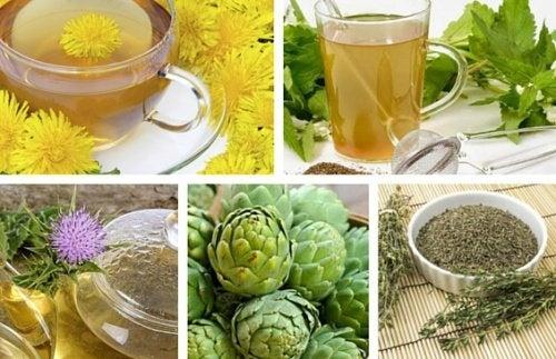 8 infusões de ervas para desintoxicar o corpo
