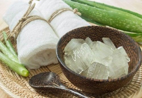 Aloe vera para o tratamento de varizes