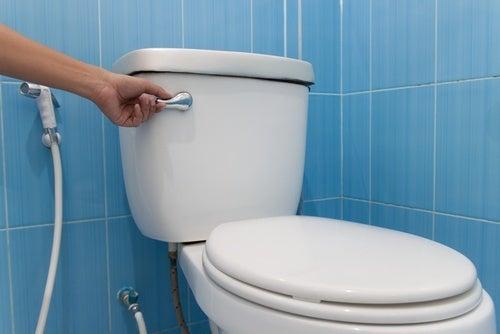 As  mulheres que usam banheiros públicos devem saber que o vaso sanitário é cheio de bactérias