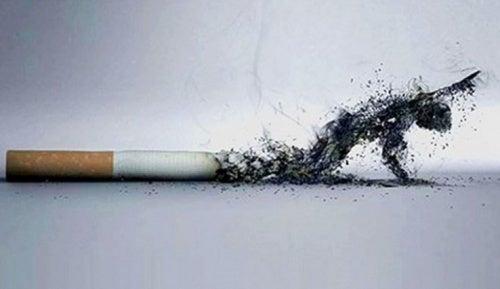 O tabaco desconta dias de sua vida