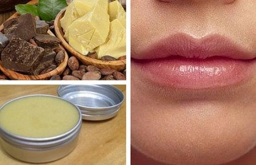Como preparar bálsamos labiais sem produtos químicos
