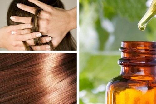 Como preparar em casa um sérum natural para nutrir e reparar o cabelo