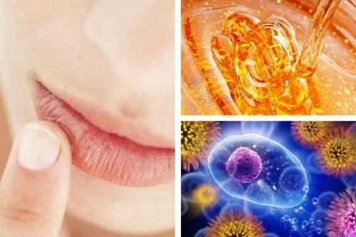 10 maravilhosos benefícios do mel natural