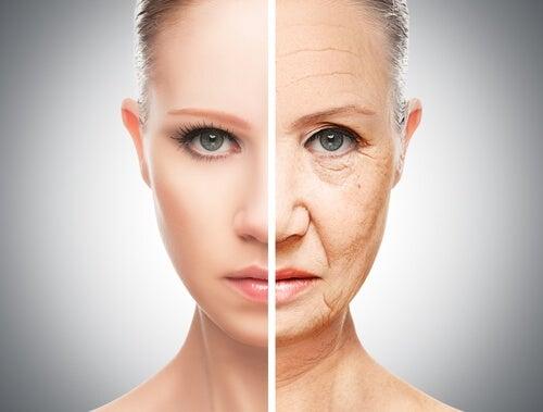 Cenoura para prevenir o envelhecimento