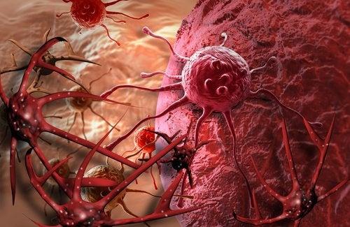 Mamografia para o estudo das células
