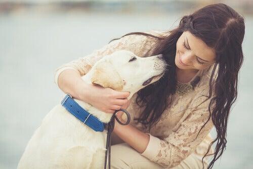 Ser feliz com seus animais de estimação