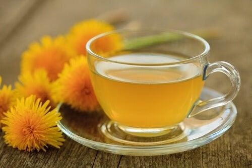 Chá de dente-de-leao para combater o fígado gorduroso
