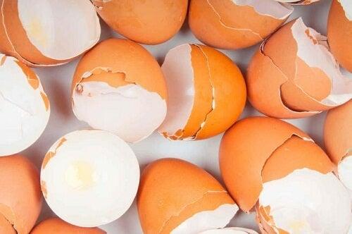 Remédios caseiros com cascas de ovos