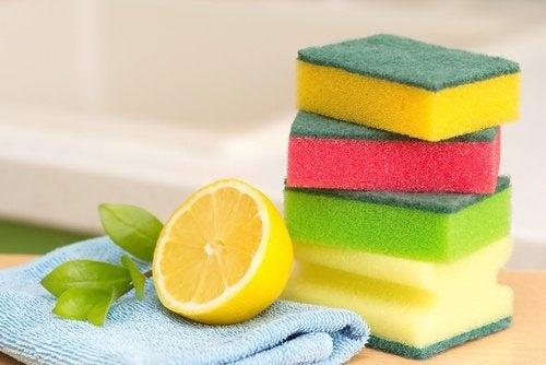 Limão e esponja para tarefas domésticas