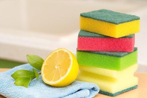 Casca do limão desinfeta superfícies