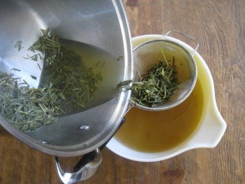 Como preparar álcool de alecrim e castanha da Índia para tratar a dor muscular e articular